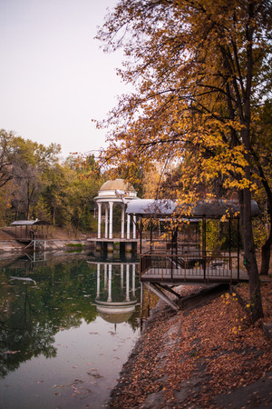 late fall: Romantic pond in late fall