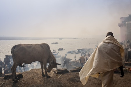 prime adult: VARANASI, INDIA: A Hindu priest performs the Ganga Aarti ritual Stock Photo