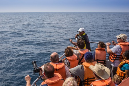 dive trip: MIRISSA, SRI LANKA-February 01, 2015: People travelling by boats to see blue whales. Mirissa is the place which has the biggest blue whale colony in Indian ocean on February 01, 2015 in Mirissa,  Sri Lanka. Editorial