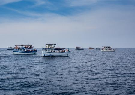 fishing fleet: Tired fishing fleet getting back, France near the Atlantic ocean Stock Photo