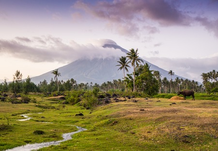 the most beautiful, Vulcano Mount Mayon in the Philippines Stock Photo - 45782647