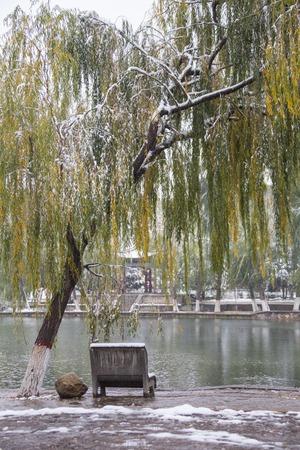 bower: shady bower on the west lake in hangzhou China