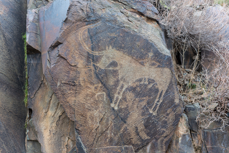 the ancients Petroglyphs in Tamgaly Tash in Kazakhstan Archivio Fotografico - 116175936