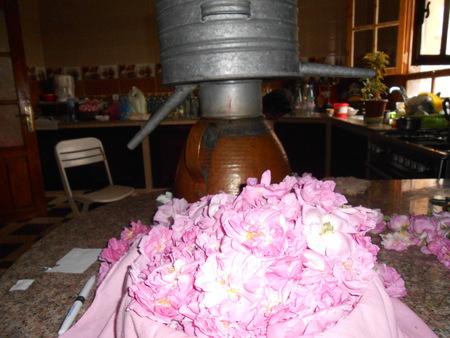 distiller with flowers Standard-Bild