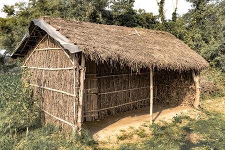 Cabane tribale au toit de chaume, fabriquée à partir de pailles et de bâtons de bambou. Une forme de maison typique des régions tribales de l'Inde orientale. Ces maisons sont temporaires et régulent la température de manière naturelle. - Image.