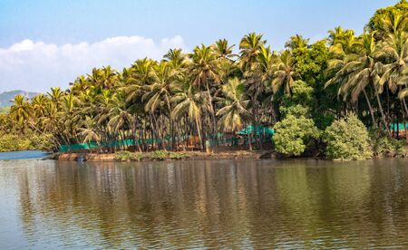 Photo of very beautiful and scenic view of a typical South Indian Coastal Village, comprising stream of calm river/backwaters/lagoon with coconut trees alongside its bank and blue sky with white cloud