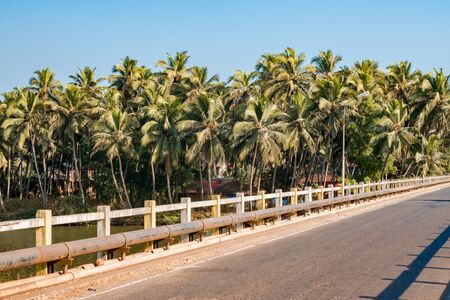 Beautiful roadside photo taken while travelling in a coastal town of Goa, South India, comprising a river bridge with colored guardrails, slanted coconut trees and a steady stream flowing beneath it