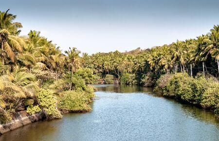 Beautiful Scenic view of backwaters of Kerala, from bridge above. Imagens