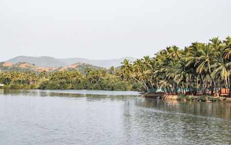 Beautiful Landscape of Lagoon/Backwaters from Western Ghats of South India with plenty of greenery, palm trees along its coast, and mountain in the background. Perfect Picnic and Weekend destination.