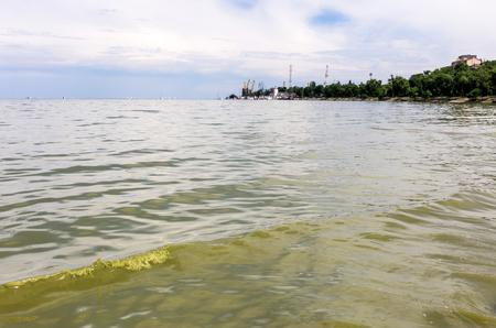 turbid: Azov sea in Taganrog, Russia