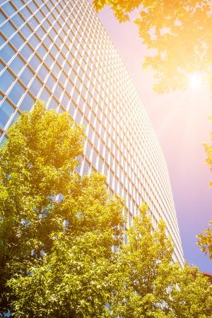 Perspectief van hedendaagse kantoorgebouw met takken van de boom op de voorgrond