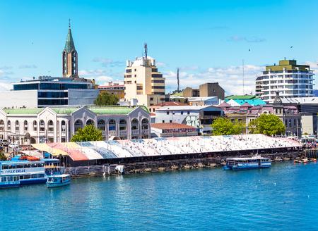 VALDIVIA, CHILI - OKTOBER 30, 2016: Mening van de vissenmarkt in Valdivia. Dit is een van de belangrijkste toeristische trekpleisters van de stad.