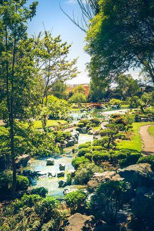 Beautiful japanese garden with stream in La Serena, Chile Фото со стока