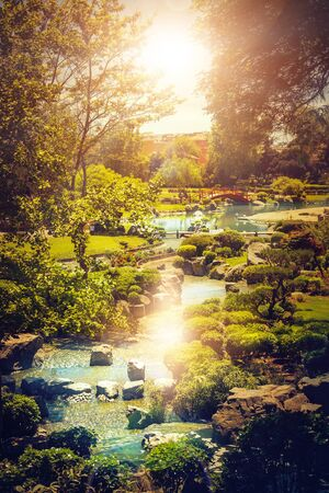 Beautiful japanese garden with stream and sun lighting through the trees in La Serena, Chile