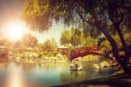 Beautiful japanese garden with decorative red bridge under the pond at sunset in La Serena, Chile Фото со стока