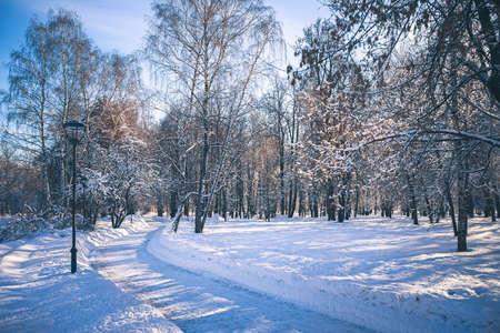 """Sunny day in park """"Future garden"""" at winter in Moscow, Russia Archivio Fotografico"""