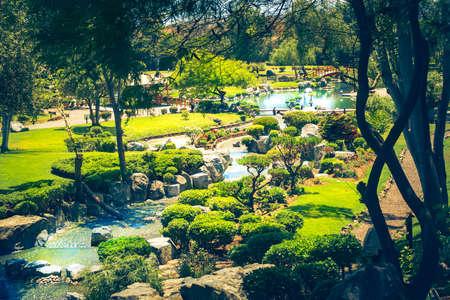 Beautiful japanese garden with stream in La Serena, Chile Standard-Bild