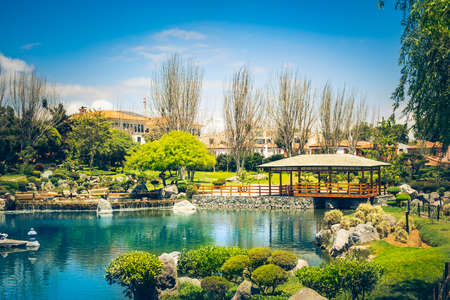 Japanese garden with pond in La Serena, Chile Фото со стока