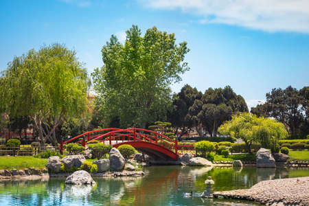 Beautiful japanese garden with red bridge under the pond in La Serena, Chile