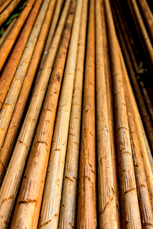 solid wire: Closeup of old round wood background