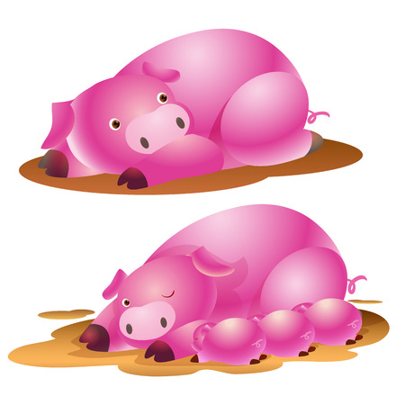 suckling: cute pig family and baby suckling Illustration