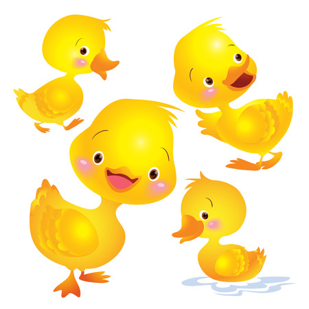 animal farm duck: Cartoon baby ducks. Isolated objects for design element