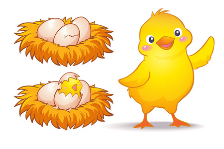 Vector of egg and little chicken