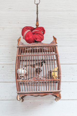 canaries: Canaries in the cage on the house wall. Stock Photo
