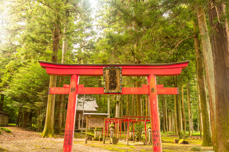 japanese temple: Japanese Shrine or Japanese temple in the forest