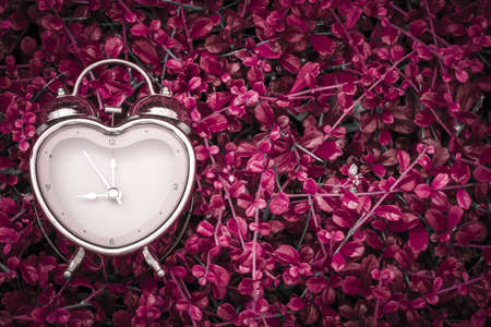 Abstract a color filter of heart shaped alarm clock put on the grass background in the public park, Time for supporting when people get who lack of desire with love concept
