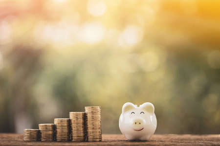 A piggy bank and coin with growing value and interest with working capital management put on the wood in the public park, Saving money for future investment concept.