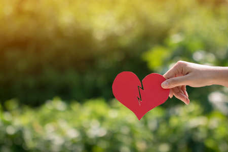 Woman hand holding a red paper heart is broken on bokeh background in the public park, Disappointment and for give supporting when people get who lack of desire with love and Valentines day concept.