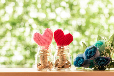 Gold coin in the two clear bottle with grow value as a red and pink hearts put on the top and the purple flower on bokeh background, Saving money for buy health insurance to the loved ones concept. Imagens