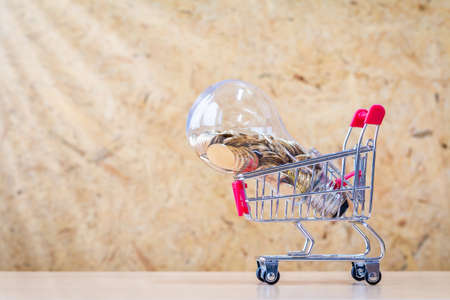 Coin in the bottle of light bulb with growing value money put in the shopping carts on wood on sunlight in the office, Business investment and saving for renewable and conservation energy concept.