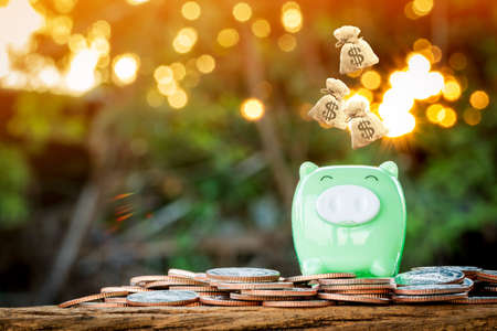 Piggy bank and dropping money bag on the top put on the gold coin with working capital management in the public park, Loan or the saving money for future investment concept.