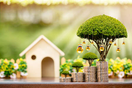 Wooden home and stacked coin and a golden money bag of tree with grow value on sunlight in the public park, Saving or investment for buy a real estate and house concept.