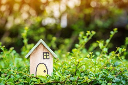 Wooden home model put on the grass on the sunlight in the public park, Loan for real estate or save money for buy a new house to family in the future concept.