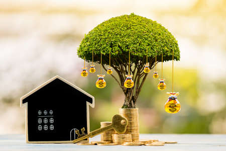 Blackboard home and master key and stack coin and crystal gold is money bag of tree with interest value in the public park, Saving for buy house or loan for business investment real estate concept.
