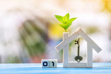 Home model with plant with growing and a house key and cubic showing number