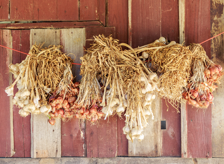 shallots: Garlic and shallots.