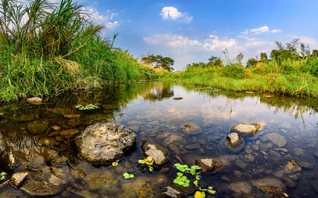 river lake grass Zdjęcie Seryjne