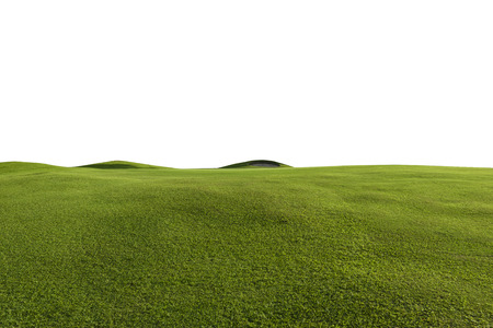 green grass field and white backgrounds