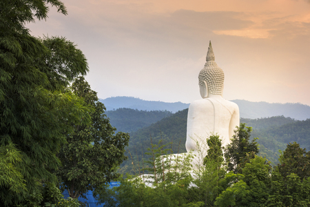 behind white buddha statue in forest and  sunset Zdjęcie Seryjne
