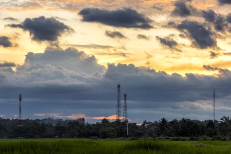 dreamy golden sky sunset and telephone pole Zdjęcie Seryjne