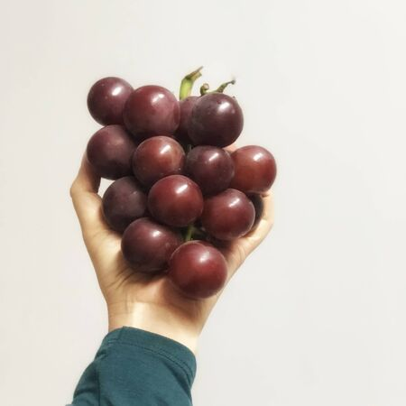 wine grape fruit picking from vineyard ready to eat on asian woman hand on the empty wall natural light
