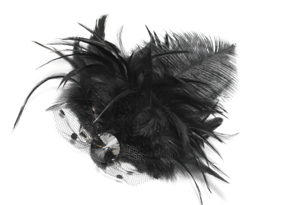 hairpin: Black feather Hairpin on White background Stock Photo