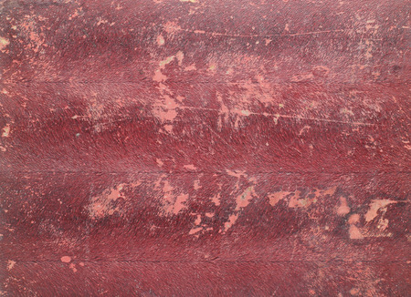 leathery: Old Leather texture background Stock Photo