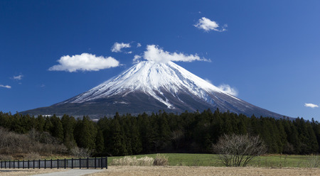 fuji san: Fuji San Moutain in Blue sky and forest Stock Photo