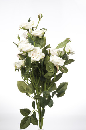 green flower: Artificial White Rose