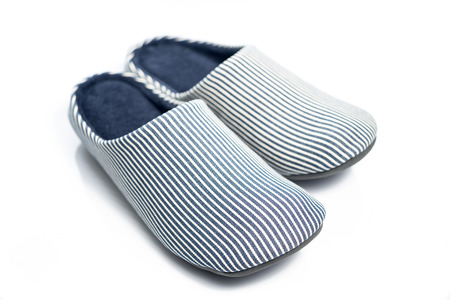 indoor background: Blue Pattern Home Shoes on White background